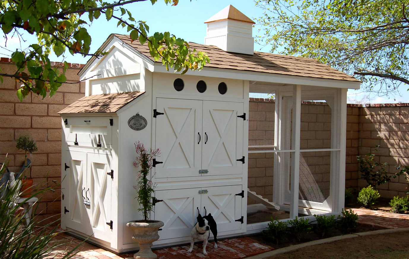 5 simple steps on how to build a backyard chicken coop freecycle usa