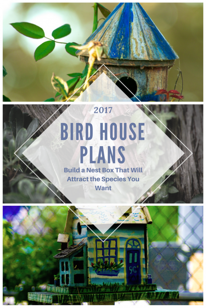 Bird houseplans